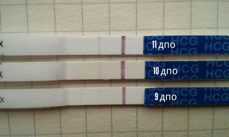 Эвиплан тест на беременность