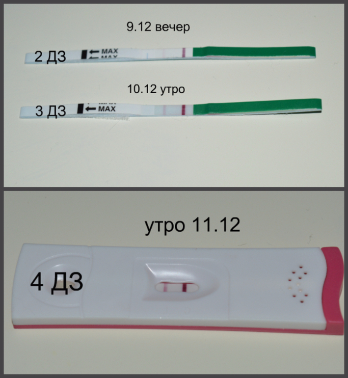 Тесты показывают что не беременна 57