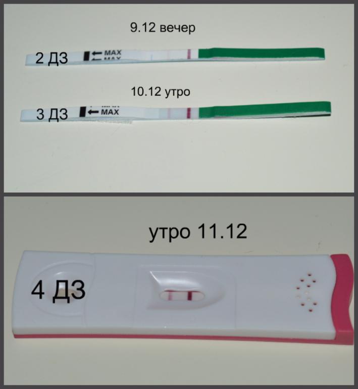 Гладить во сне беременную по животу 38