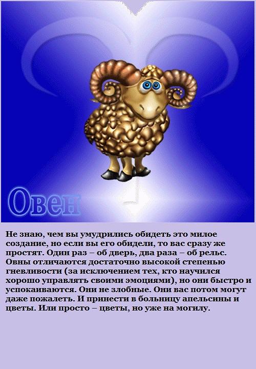 Гороскоп   сегодня женщин овен