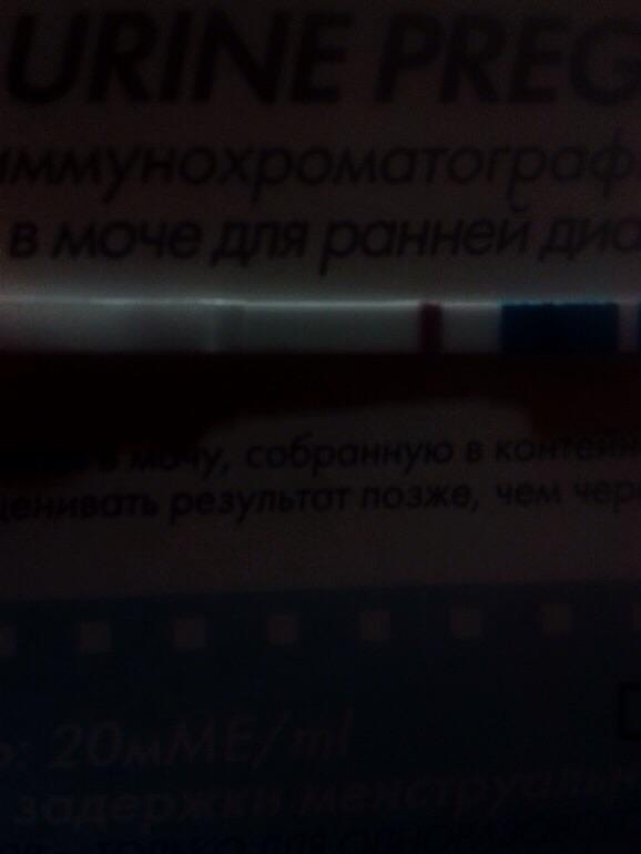 d472042228a418b152e675f57540c6e9.jpg