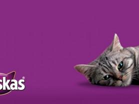 Whiskas для кошек