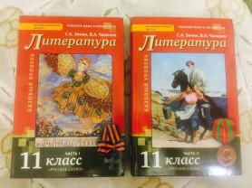 абсолютно новые учебники по литературе 11 класс ✅📚