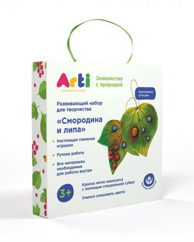 Набор для декорирования Cмородина и липа