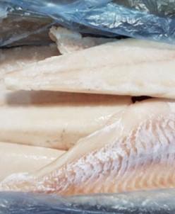 ТРЕСКА ФИЛЕ на коже 6,81 Баренц рыба