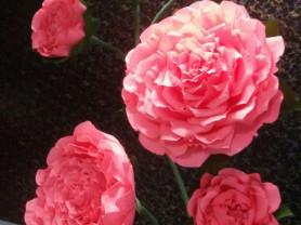 Ростовые цветы в интерьер и на праздники