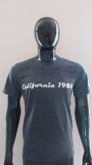"""Футболка мужская FS 2231 """"Калифорния"""""""