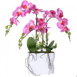 15084-NT Дек/цветы Бордо-орхидея в кер/вазе(х12)