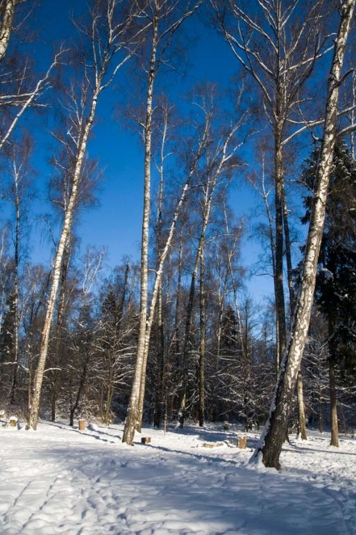 Воспоминания о зиме...