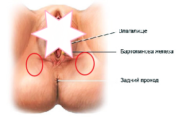 При беременности болит таз