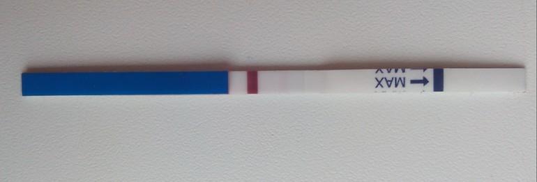 Тест на беременность фото с одной полоской