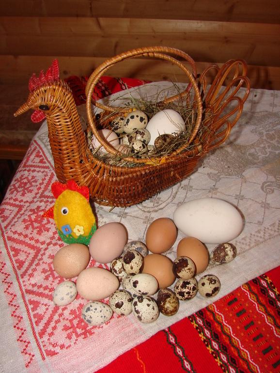 Пасхальные  корзины  с  яйцами