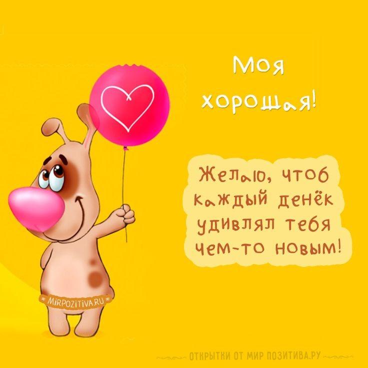 Шуточные подарки со стихами на день рождения женщине » Поржать. ру