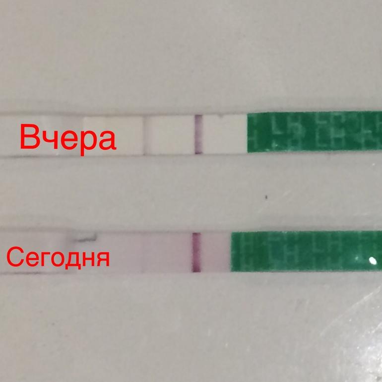 Как сделать тест на беременность отрицательным если я беременна