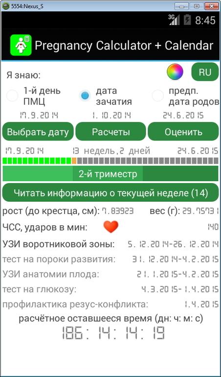 Русские витязи календарь выступлений