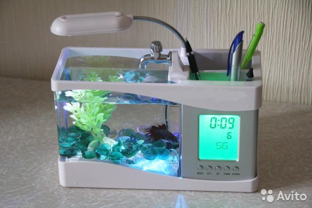 Настольный аквариум своими руками 98