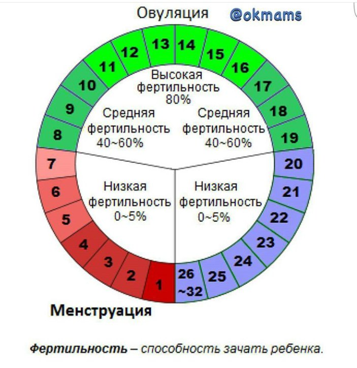 Менструальный цикл более 40 дней Интересное в мире сегодня Mebel-zavod.ru