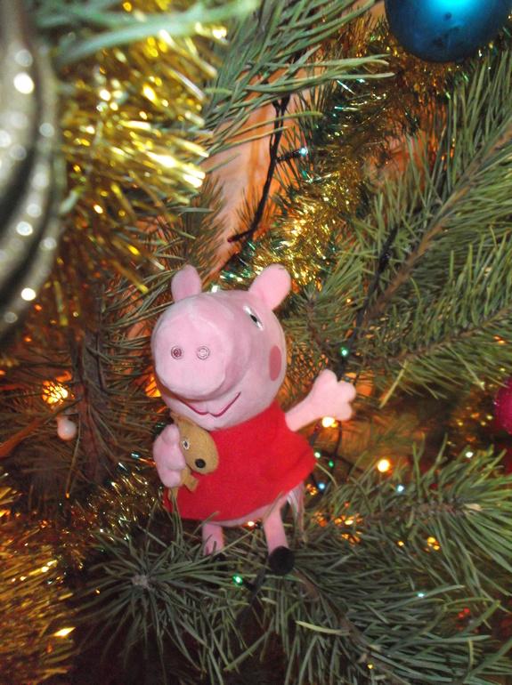 Резиновая свинка в попе девушки 20 фотография