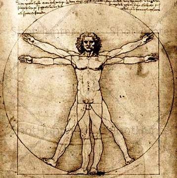 16 фактов любопытных о нашем теле