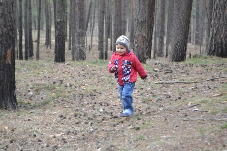 Прогулка в лесу 20.04.2014