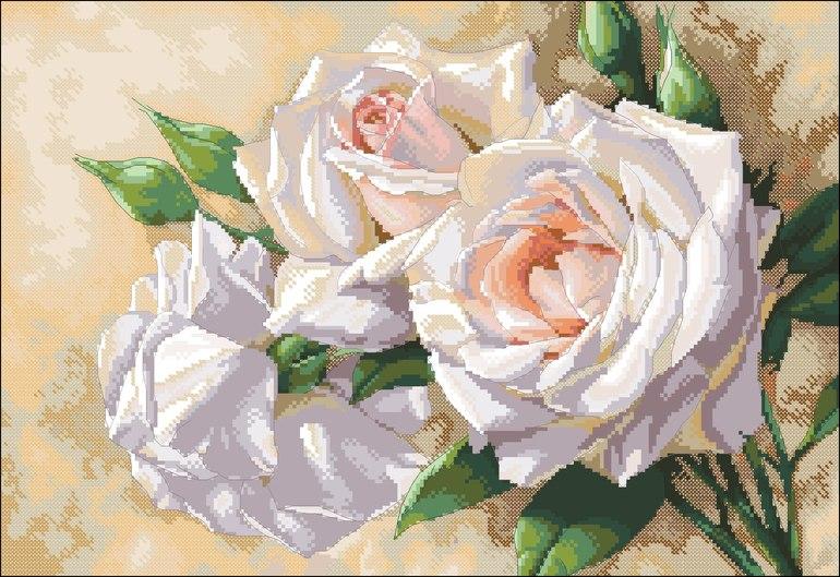 Белые розы алиса вышивка схема