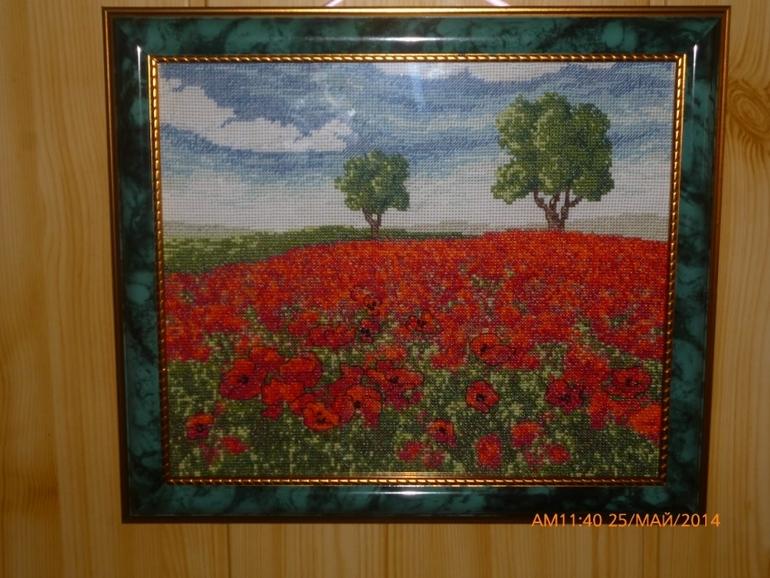 маковое поле)