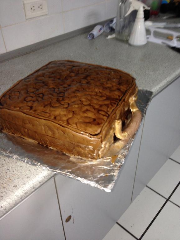 perviy mastichniy tortik