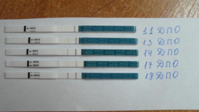 11 дпо тест не показывает беременность