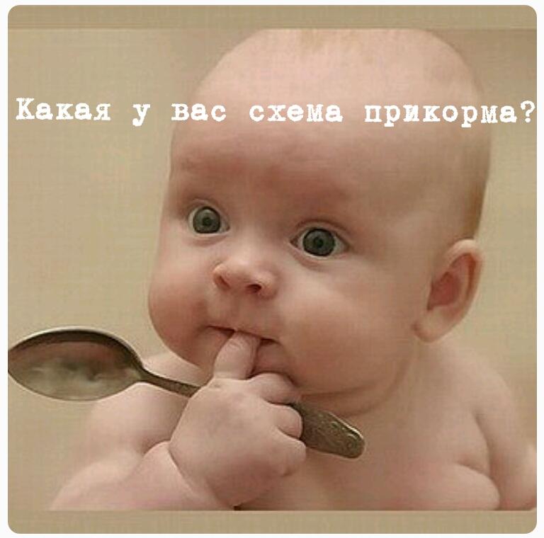 Начинаем прикорм!
