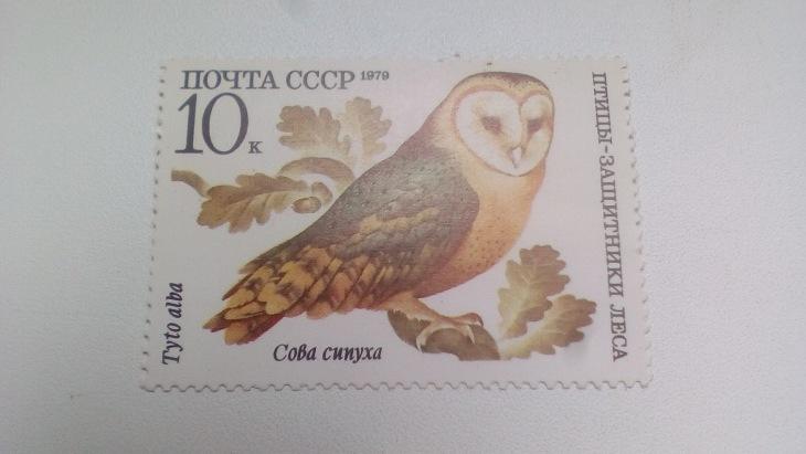 Марка 10к 1979 год СССР Сова сипуха