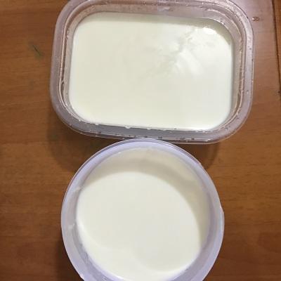 Закваска для йогурта с лактобактерими