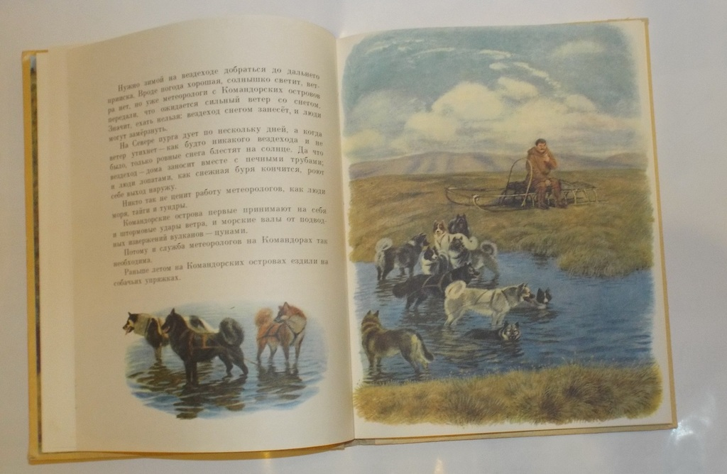 Снегирев В разных краях худ. Устинов 1986
