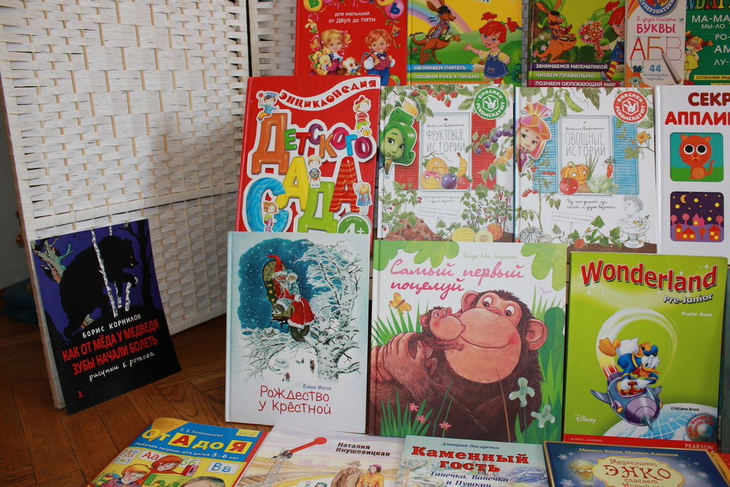 Пакет детских книг 33 наименования Комаровский