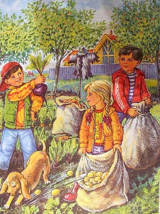 Сбор урожая осенью рисунки