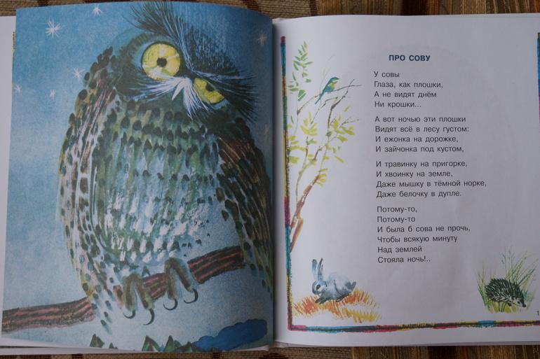 подарок сова стихи достаточно сытный, ингредиентов