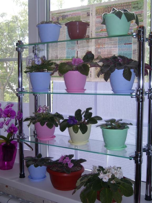 Стеллаж для цветов на окно купить