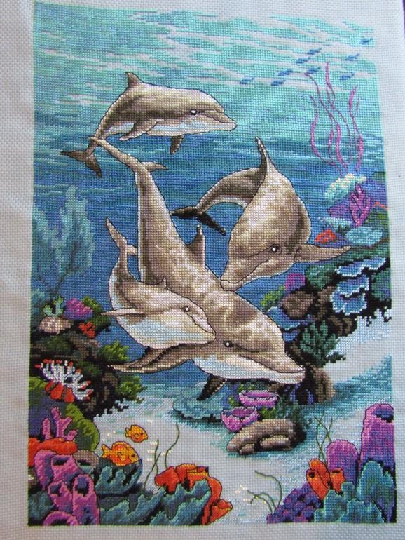 даже дельфины от дименшенс картинки хотела рассказать вам