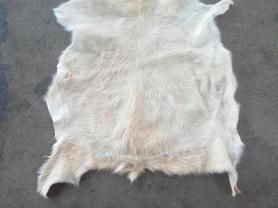 продам шкуры горных коз