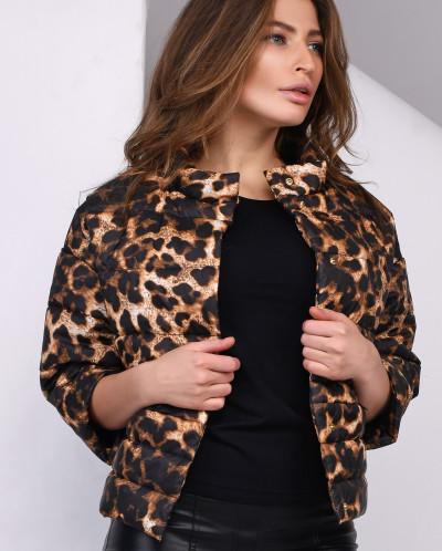 Куртка PL-8837-24