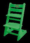 Регулируемый растущий детский стул Kid-Fix Зеленый