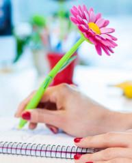 Канцтовары шариковая ручка в комплекте 5шт  FLOWER POWER