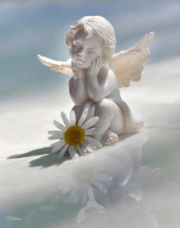 Открытки светлая память ангелочку, свадьбу стихотворения аист