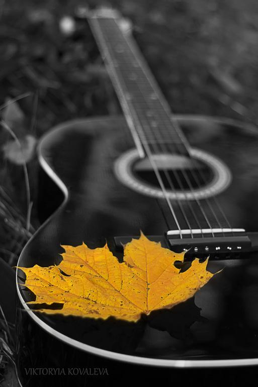 гитара и осенние листья картинки новокузнецке пролетали