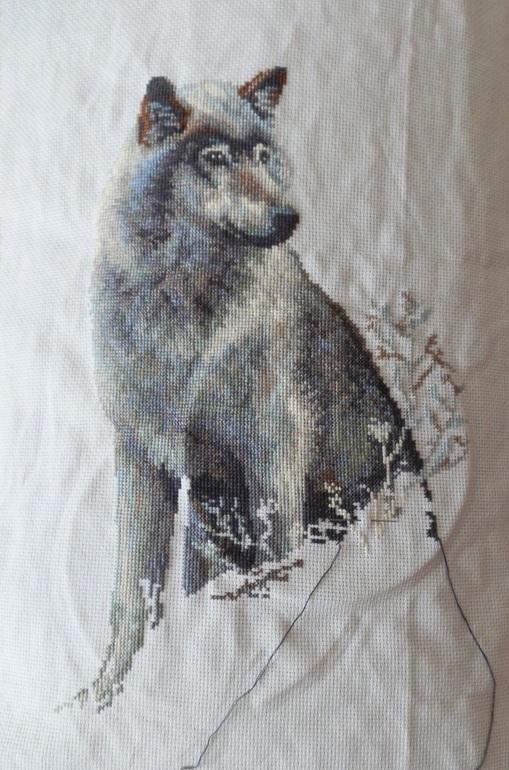 Вышивка риолис волк